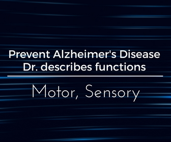 Prevent Alzheimer's Disease. Dr. describes functions: Motor, Sensory