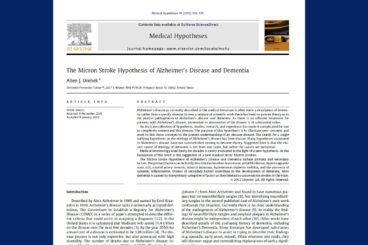 Micron Stroke Hypothesis
